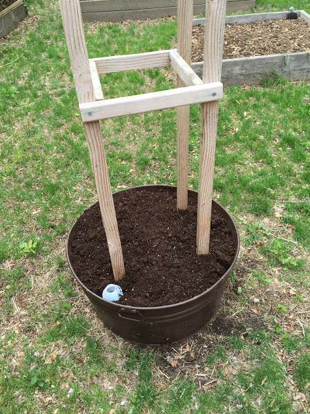 tomato tower soil
